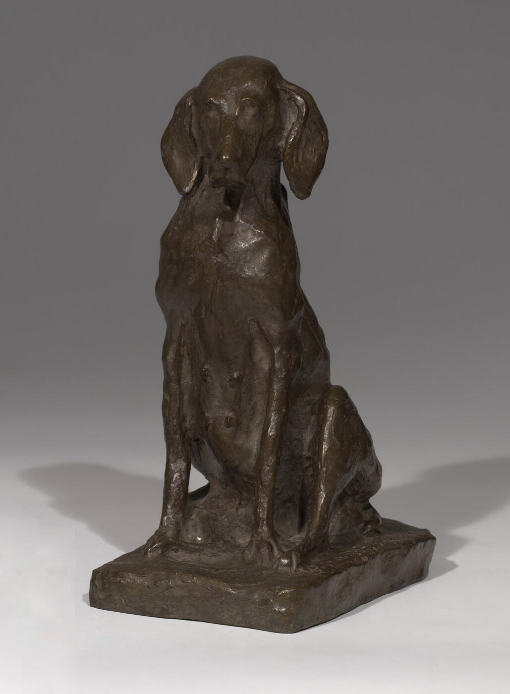 A Bronze model of a seated Dog