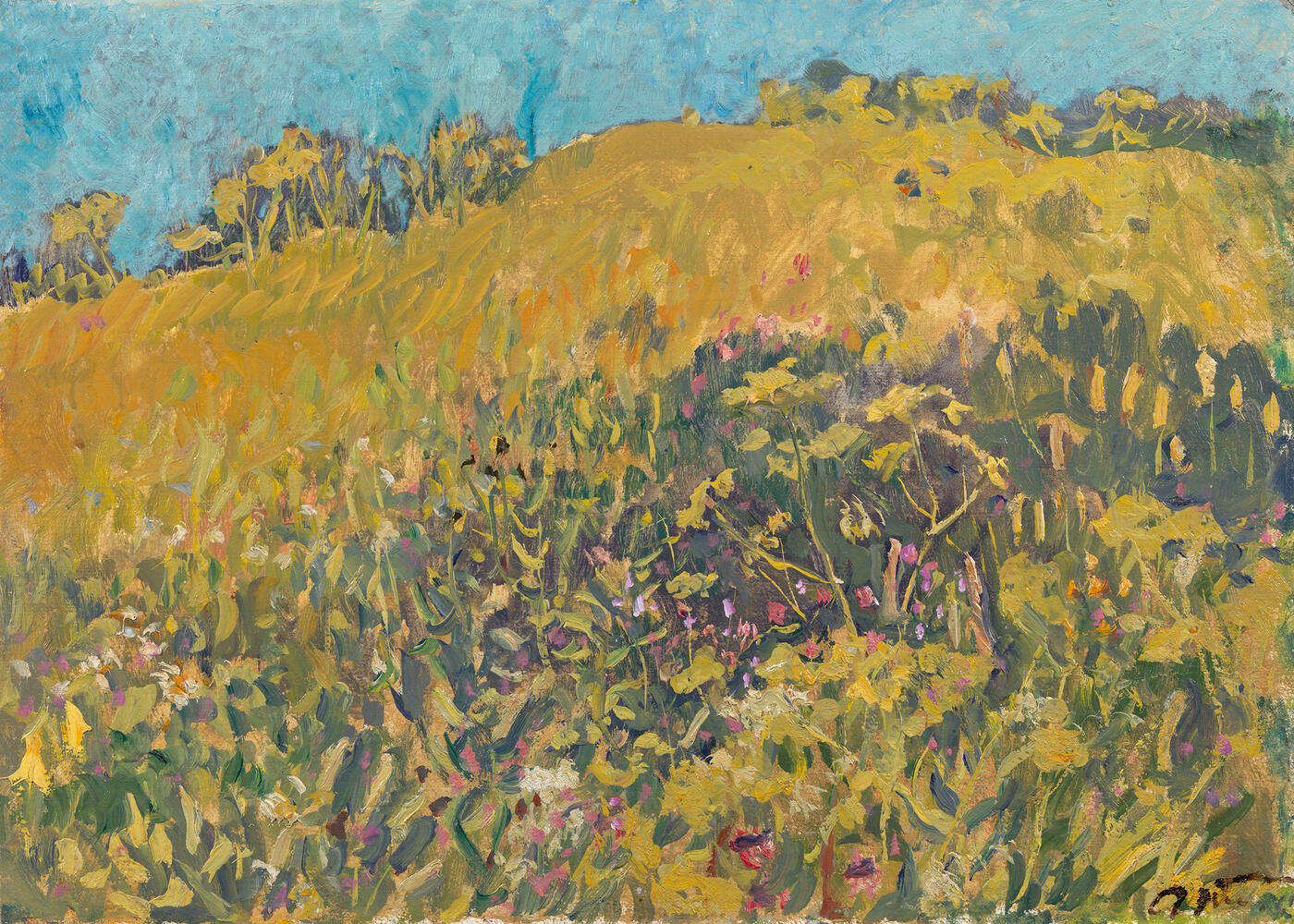Hill Covered with Flowers